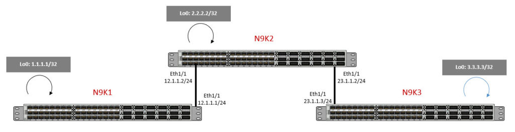 RouteLeakNexus 9000 - Packet Tracer - RouteLeak